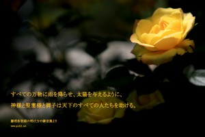20140625-12_Ja 助ける