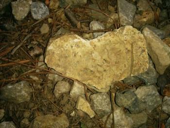 ハートの石6