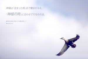 20141011-7_Ja 神様の時