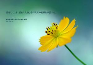 20131202-22_Ja (1)