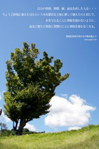 20130712-35_Ja